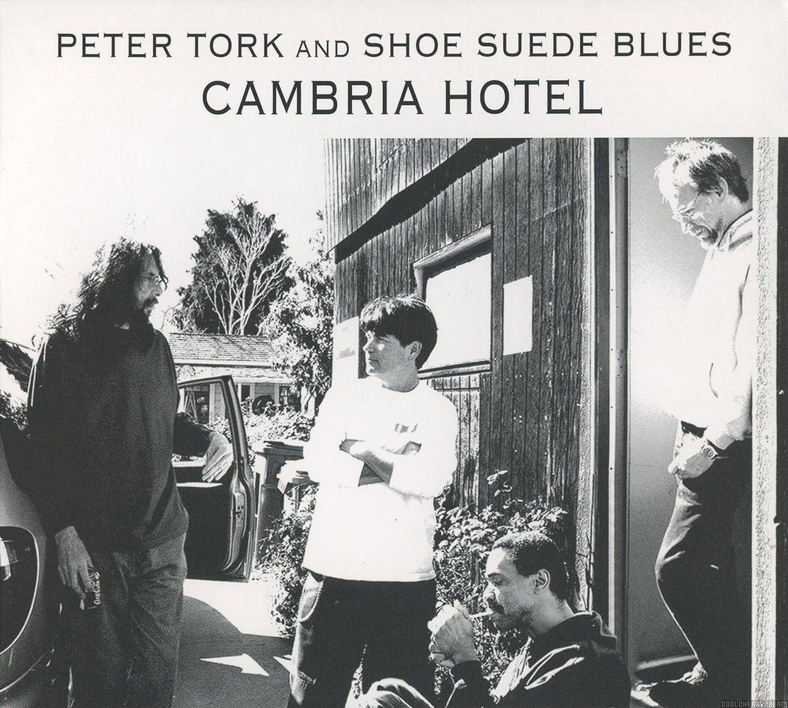 Shoe Suede Blues Tour