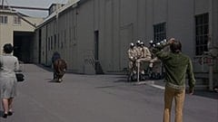The Critic (Frank Zappa), Lew Lehr Bull (?), Davy Jones