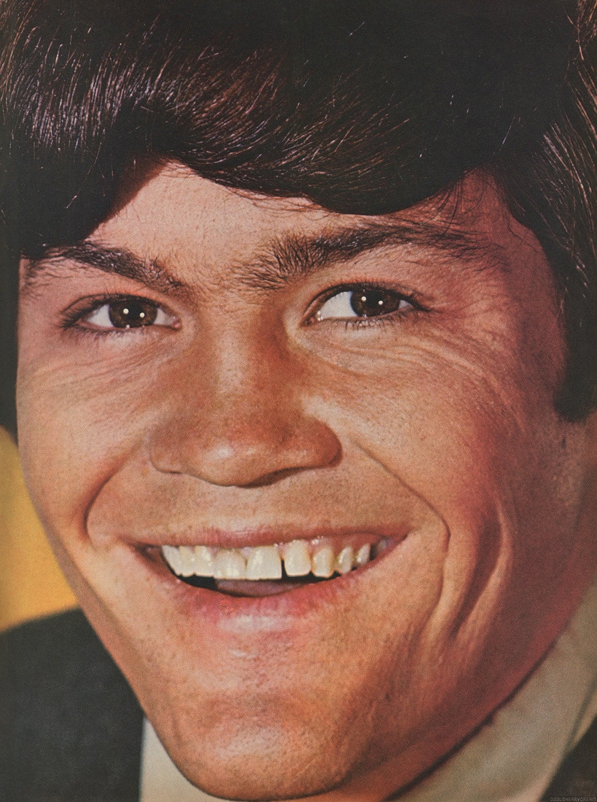 March 1967 Pictures Sunshine Factory Monkees Fan Site