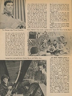 <cite>Teen Screen</cite> (August 1967), TS in Hollywood, Page 14