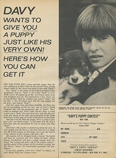 <cite>16</cite> (May 1968), Davy&rsquo;s Puppy Contest, Page 23