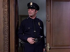 Patrolman (Don Sherman)