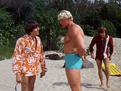 Davy Jones, Bulk (David Draper), Peter Tork