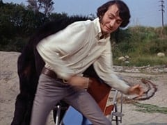 Monkey (?), Mike Nesmith