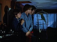 Davy Jones, Peter Tork, Micky Dolenz, Horace (?)