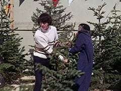 Mike Nesmith, Christmas Tree Woman (?)