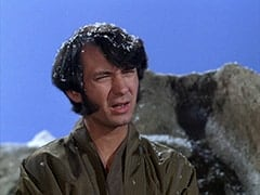The Regular Lama (Mike Nesmith)
