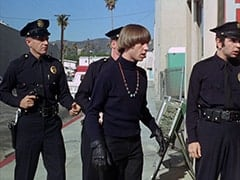 Peter Tork, Cop (Robert Michaels)